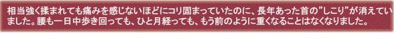 菜穂子さん(2014-01-08 18.35.05)